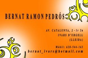 Targeta 1 del Bernat Ramon